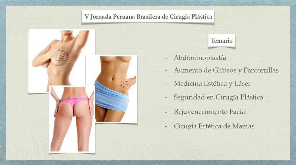 V Jornada Peruana-Brasilera de Cirugía Plástica